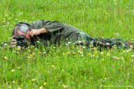 Reiner Leifried, liegend im Gras, Makrofotografie, Grnezstreifen der ehemaligen deutsch-.deutschen Grenze, Hitzelrode, Deutschland