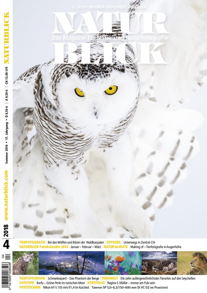 2018-11-naturblick-titelfoto-snowy-owl-724x1024.jpg